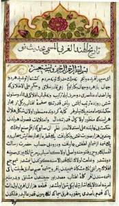 """Turkish manuscript"""